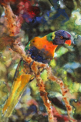 Talons Mixed Media - Tropical Bird 1 by Susan Powell