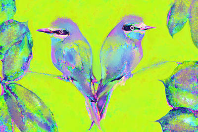 Flycatcher Digital Art - Tropical Birds Blue And Chartreuse by Jane Schnetlage