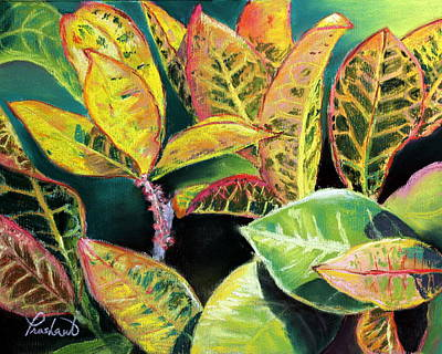 Painting - Tropical Colorful Croton Leaves by Prashant Shah
