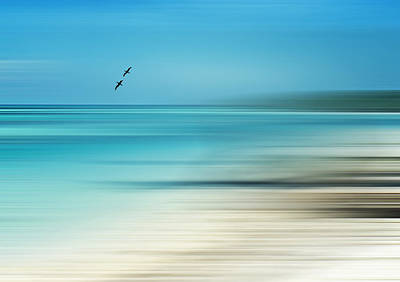 Photograph - Tropical Cove Horizon by Deborah Smith