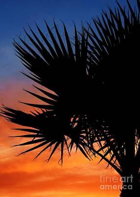 Photograph - Tropical Desert Island Sunset by Mistys DesertSerenity