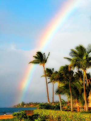 Photograph - Tropical Dreamin' by Lynn Bauer