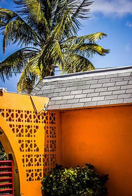 Photograph - Tropical Fiesta by Sara Frank