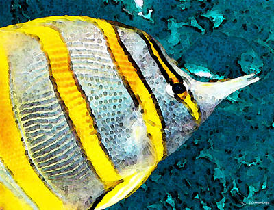 For Sale Painting - Tropical Fish - Copperband - Beach Art by Sharon Cummings