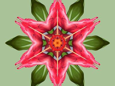Digital Art - Tropical Flower Mandala by Diane Lynn Hix
