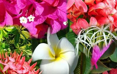 Tropical Flower Power 2 Art Print