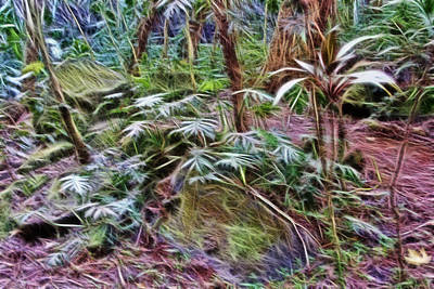 Forest Floor Digital Art - Tropical Forest Floor by Linda Phelps