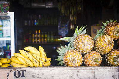 Tropical Fruits Art Print by Tuimages