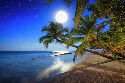 Photograph - Tropical Full Moon Night by Cinoby