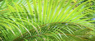 Tropical Green Art Print by Sean  James G