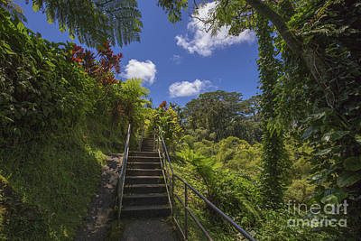 Photograph - Tropical Hawaii by Shishir Sathe