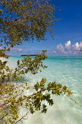 Zen Artwork Photograph - Tropical Island by Jenny Rainbow