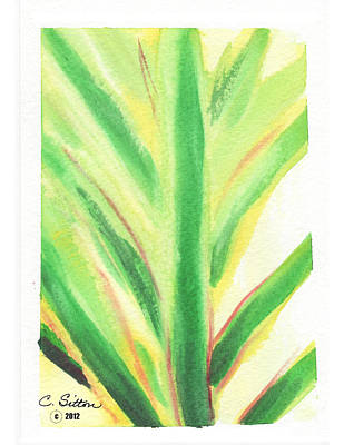 Painting - Tropical Leaf by C Sitton