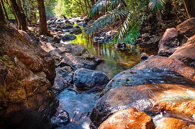 Art Goa Photograph - Tropical Light In The Heart Of Jungles. Goa. India by Jenny Rainbow