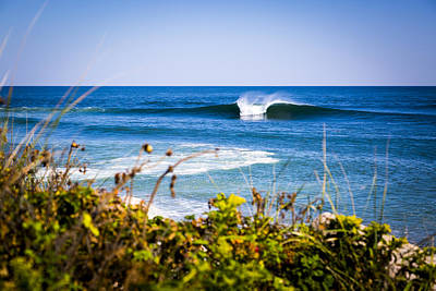 The Hamptons Photograph - Tropical Montauk by Ryan Moore