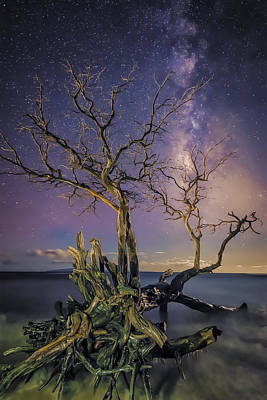 Tropical Nights Art Print by Hawaii  Fine Art Photography