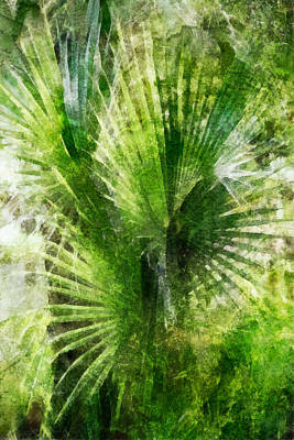 Digital Art - Tropical Palm Grunge by Francesa Miller
