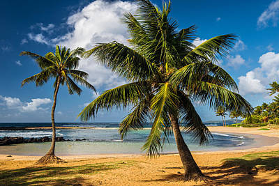 Poipu Photograph - Tropical Paradise by Guy Schmickle