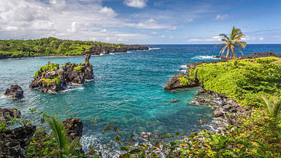 Photograph - Tropical Paradise On Maui by Pierre Leclerc Photography
