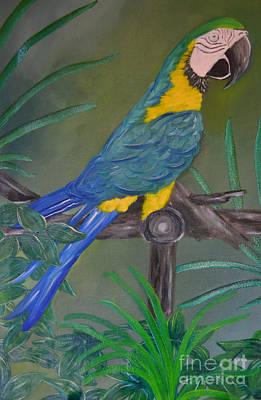 Painting - Tropical Parrot by Cecilia Stevens