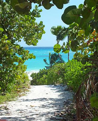 Photograph - Tropical Path 2 To Harbour Island Beach by Duane McCullough