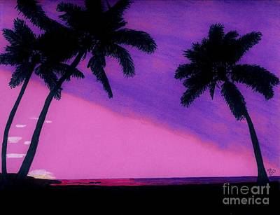 Drawing - Tropical Pink Sunset by D Hackett