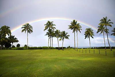 Photograph - Tropical Rainbow by Saya Studios