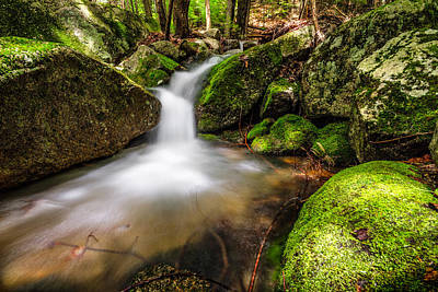 Photograph - Tropical Runoff by Robert Clifford