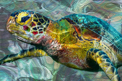 Turquoise Abstract Art Digital Art - Tropical Sea Turtle by Jack Zulli
