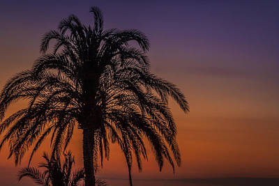 Photograph - Tropical Sunset by Alex Saunders