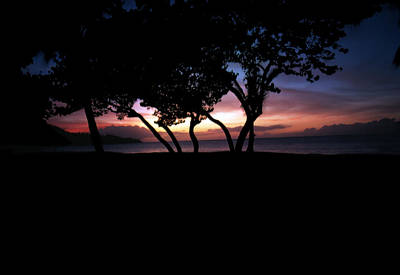 Photograph - Tropical Sunset by Ben Kotyuk