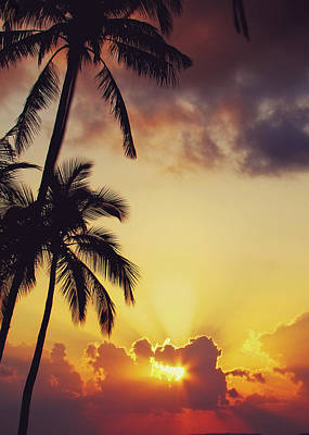 Tropical Sunset Print by Jenny Rainbow