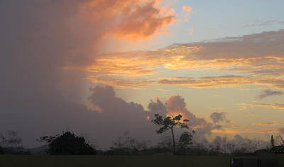 Photograph - Tropical Sunset Land by Anita Burgermeister