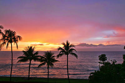 Photograph - Tropical Sunset by Peggy Collins