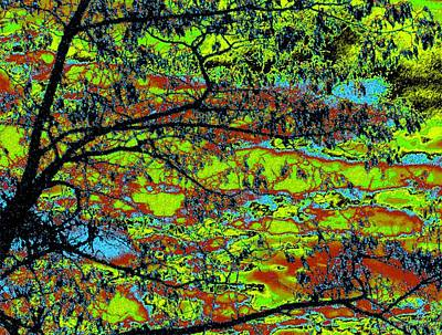Digital Art - Tropical Swamp by Will Borden