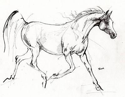 Trotting Arabian Horse Quick  Sketch Art Print by Angel  Tarantella