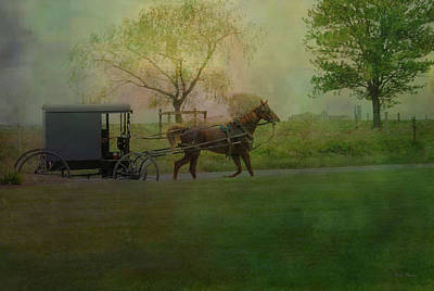 Photograph - Trotting Home by Dyle   Warren