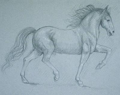 Drawing - Indestructible by Deborah Dendler