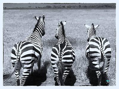 Zebra Digital Art - Trouble Makers by KJ DePace