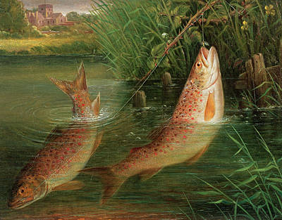 Fish Out Of Water Photograph - Trout At Winchester by Valentine Thomas Garland