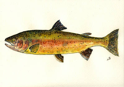Salmon River Painting - Trout Fish by Juan  Bosco