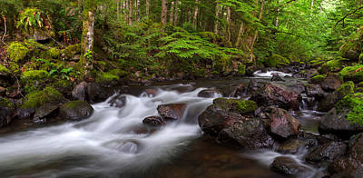 Harrison Hot Springs Wall Art - Photograph - Trout Lake Creek And Rainforest by Michael Russell