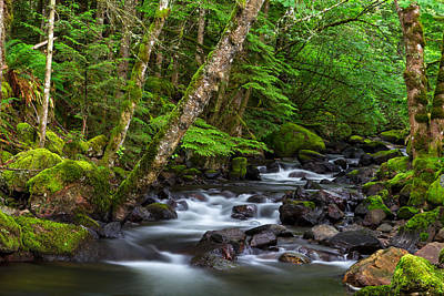 Harrison Hot Springs Wall Art - Photograph - Trout Lake Creek by Michael Russell