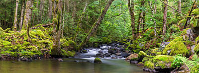 Harrison Hot Springs Wall Art - Photograph - Trout Lake Creek Panorama by Michael Russell