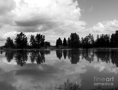 Trout Pond Reflection Art Print