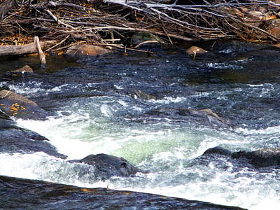 Art Print featuring the photograph Trout River by Jackie Carpenter