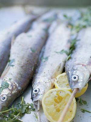 Grilled Fish Photograph - Trout With Lemon Halves And Herbs Ready For Grilling by Eising Studio - Food Photo and Video
