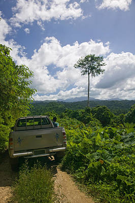 Dirt Roads Photograph - Truck A Dirt Road, Malao, Big Bay by Panoramic Images
