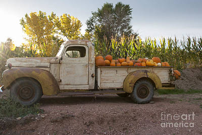 Rural Scenes Photograph - Pumpkin Time by Juli Scalzi