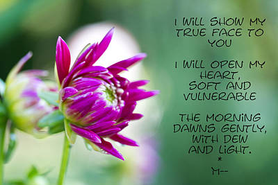 Photograph - True Face - Poem - Flower by Marie Jamieson